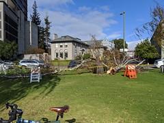 2019 Bike 180: Day 158 Been Windy