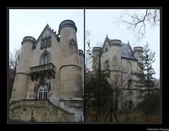 Château de la Reine Blanche- Étang de la Loge- Coye-la-Forêt. Forêt de Chantilly- Oise- France