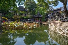 66595-Suzhou