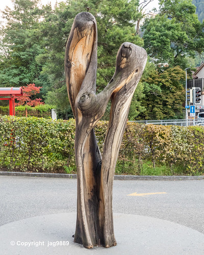 Bener Park Wooden Sculpture, Chur, Canton of Grisons, Switzerland