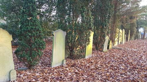 Rijtje met graven
