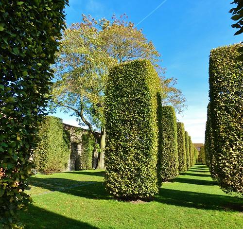 Gent - Sint-Baafsabdij site 3