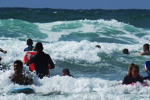 D22204.  Surf's Up!