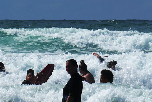 D22208.  Surf's Up!