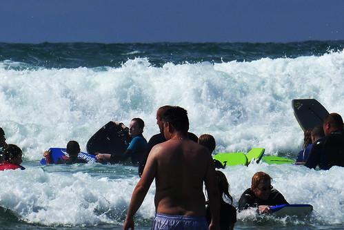 D22209.  Surf's Up!