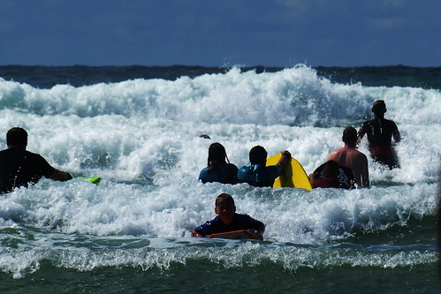 D22213.  Surf's Up!