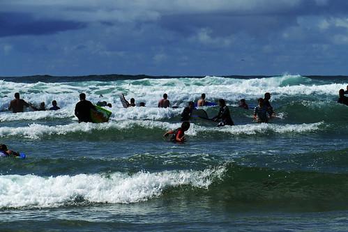 D22212.  Surf's Up!