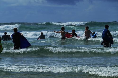 D22218.  Surf's Up!
