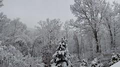 Winter Storm Ezekiel
