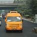 Delhi Yellow (1 of 2)