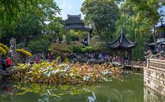 66597-Suzhou
