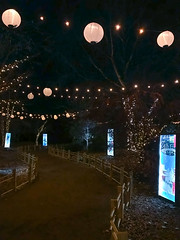 path to Sasebo Garden, River of Lights