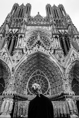 Looking Up in Reims