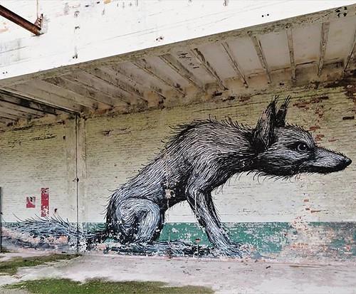 #Ghent update / great to see this #ROA again . #Gent #streetart #graffiti #urbanart #graffitiart #streetartbelgium #graffitibelgium #visitgent #muralart #streetartlovers #graffitiart_daily #streetarteverywhere #ilovestreetart #igersstreetart #gentje #inst