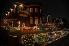 Lights Christmas - Luces de Navidad  06