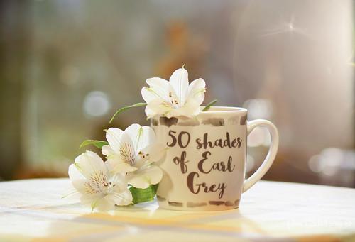 50 shades of .....