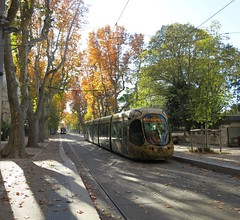 tram - Photo of Mauguio