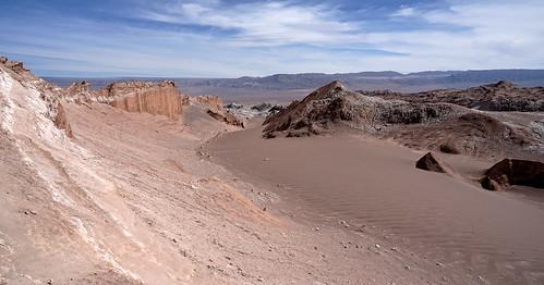 Desert's beauty