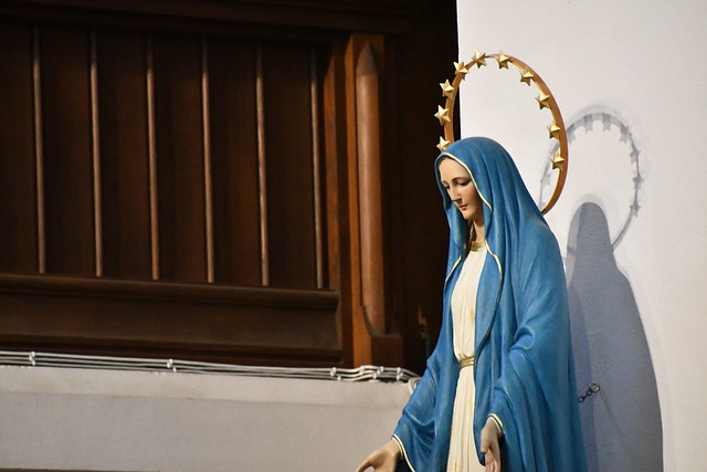 Diocesan Patronal Feast of Our Lady Immaculate and Opening Mass of The Year of The Word