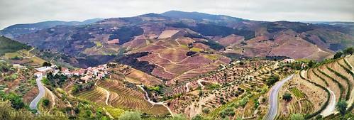 Douro valley panoramic