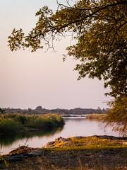 2019 Namibia Zambezi Mubala Lodge Camping