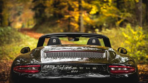 991 II Cabrio - Autumn Forest