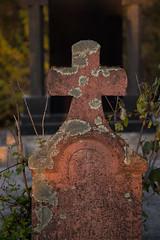 Alter Grabstein bedeckt mit Flechte