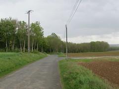 Albert: Rue de Bécourt (Somme)
