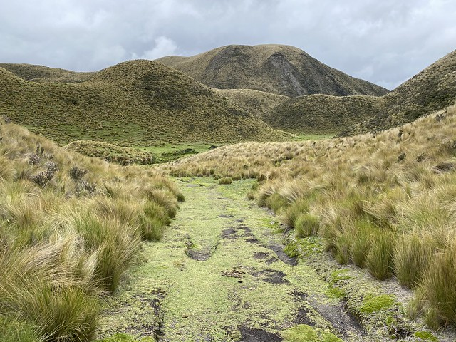 Photo:Páramo (Grassland), Downhill Mountain Biking on Cotopaxi Volcano at 3,760 meters (12,335 ft), Park in Parque Nacional Cotopaxi, Ecuador. By ER's Eyes - Our planet is beautiful.