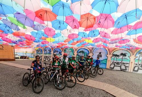 Bike colors #bike #euvoudebike #aventura #mountainbiker  #mountainbike #bicicleta #mtblife #mtbbrasil #mountainbiking #clicknabike #gtloboguará #mtb #mtbfeira  #trial #temlobonatrilha