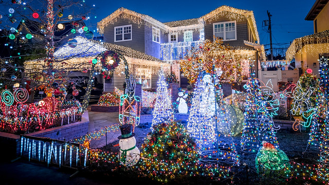 San Carlos Christmas Tree Lane