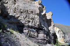 Phosphoria Formation (Permian; Astoria Hot Springs roadcut, Teton County, Wyoming, USA) 30