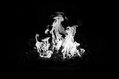 Night Flames