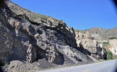Phosphoria Formation (Permian; Astoria Hot Springs roadcut, Teton County, Wyoming, USA) 28