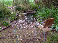Pond Viewing Chair