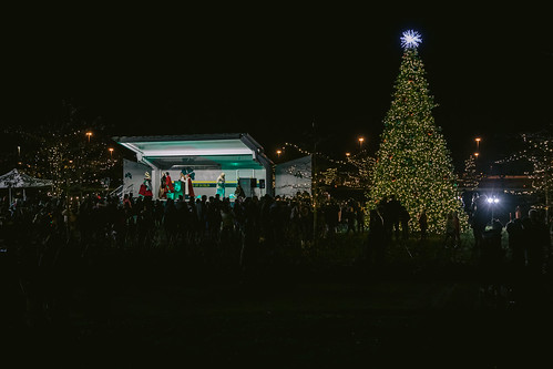 2019 Tree Lighting