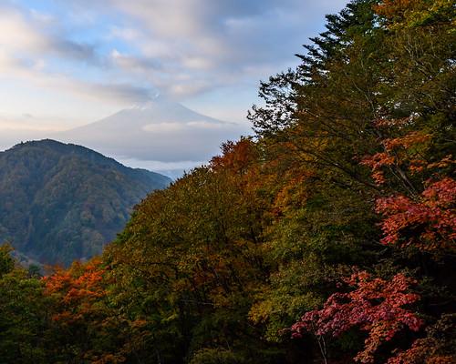 Fuji late autumn scenery