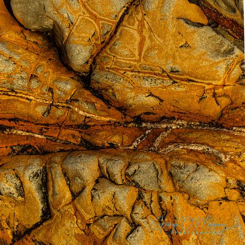Copper Coast Up Close 4