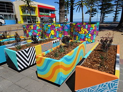 Colourful Planter Boxes