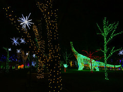 Trees at River of Lights, and dinosaur too!