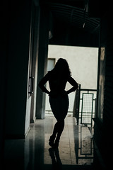 Silhouette of business woman posing