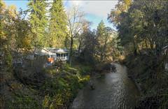 San Lorenzo River at Ben Lomond