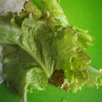 lettuce drunken woman