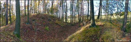 Reste der Burg Sohland an der Spree