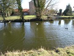 Aubers étang de la ferme de Valmonchy