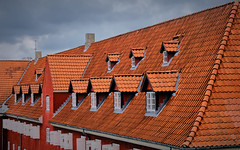 The Rows' Red Roofs