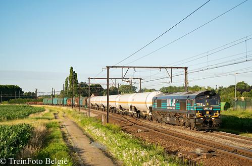 Lineas 513-10 Ekeren