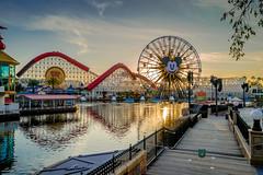 Disneyland trip, 2019
