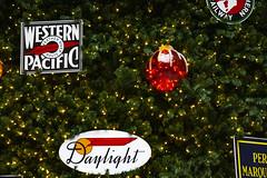 Chicago Union Station Christmas Tree 12-6-19_4960