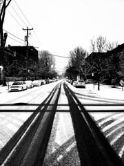 Winter Crossroads (Montreal)